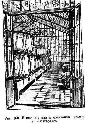 """видержка вин в сонячній камері в """"Магараче"""""""